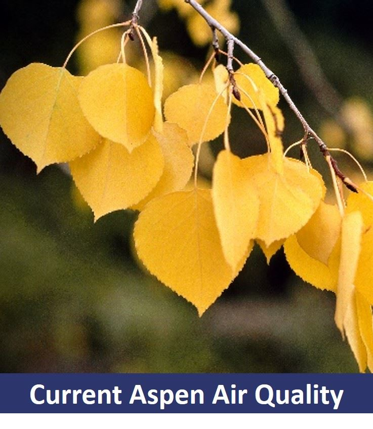 Current Aspen Air Quality Button