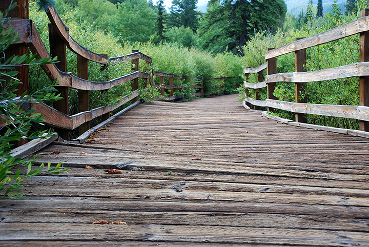East of Aspen Trail Boardwalk.JPG